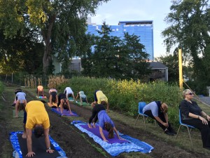 Community members taking a yoga class at Fairgate Farm